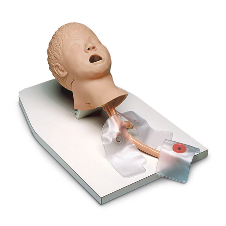 Entrenador de manejo de vías respiratorias Life/form, niño, con soporte