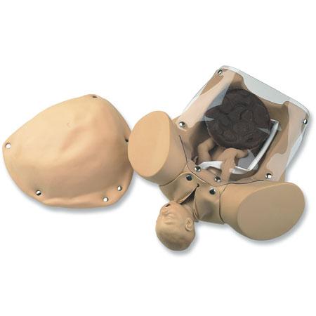 Abrazaderas de Cordón Umbilical, Para Usar con Maniquí Obstétrico